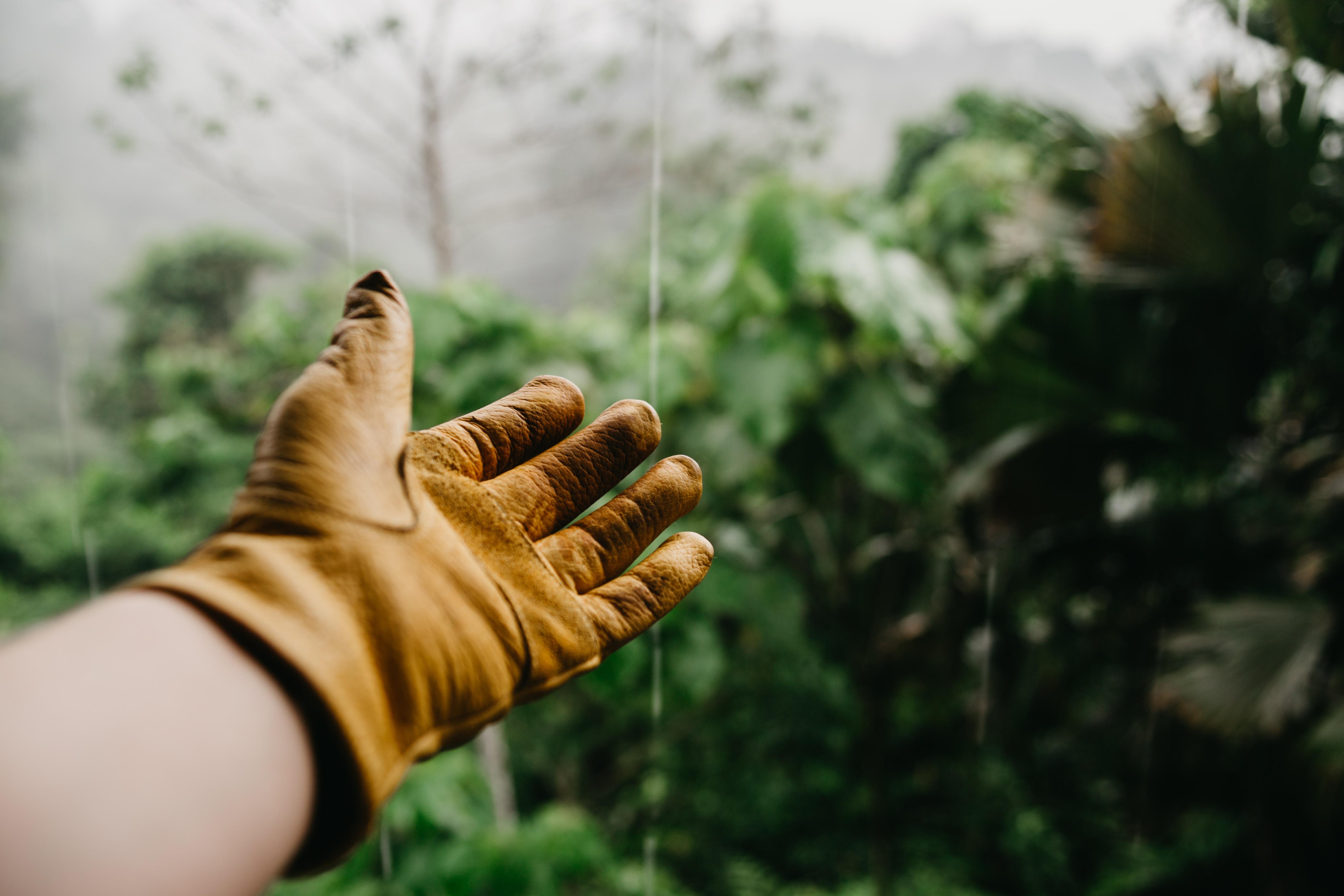 Main gantée tendue vers l'extérieure. photo by @vincefleming